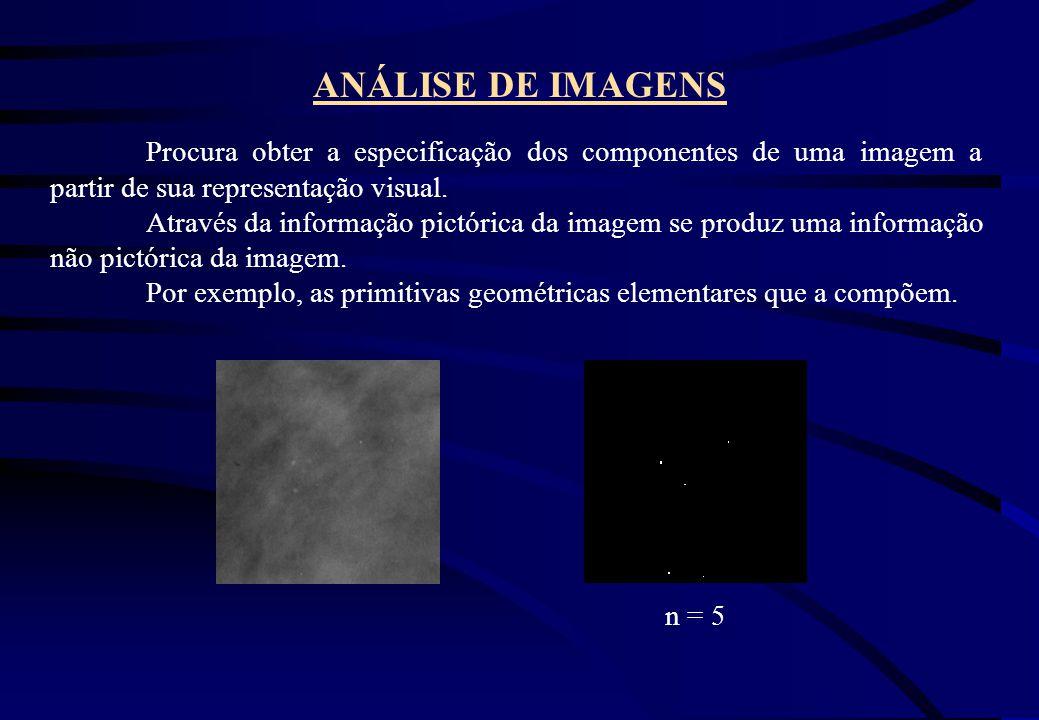ANÁLISE DE IMAGENS Procura obter a especificação dos componentes de uma imagem a partir de sua representação visual. Através da informação pictórica d