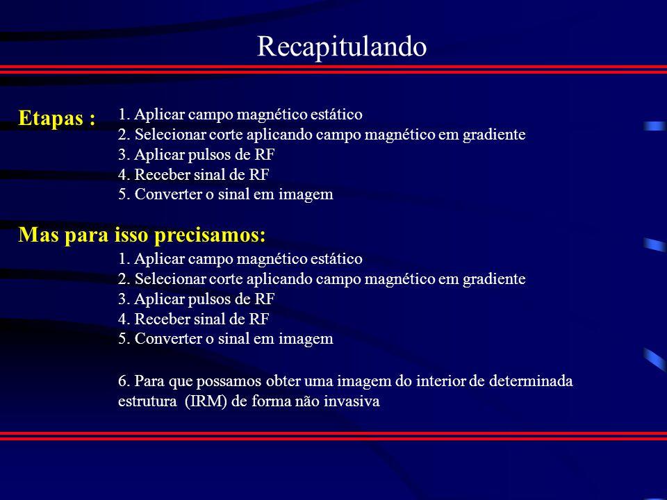 Aplicações da Ressonância Magnética Sel 705 FUNDAMENTOS FÍSICOS DOS PROCESSOS DE FORMAÇÃO DE IMAGENS