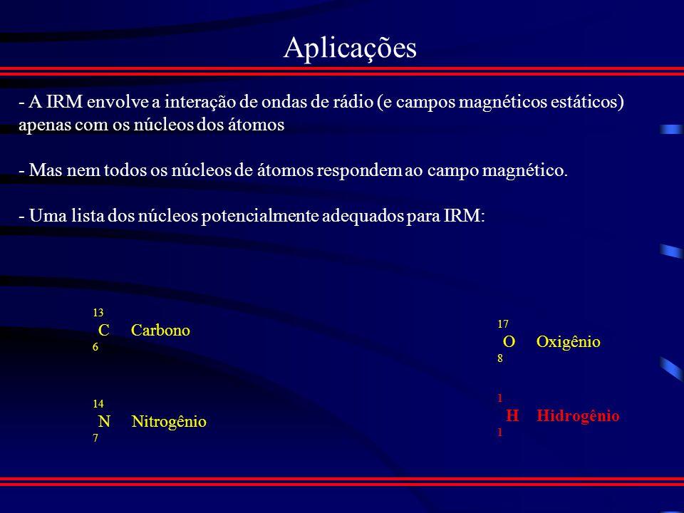 Recapitulando Etapas : 1.Aplicar campo magnético estático 2.