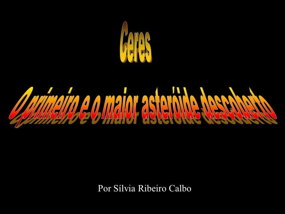 Por Sílvia Ribeiro Calbo