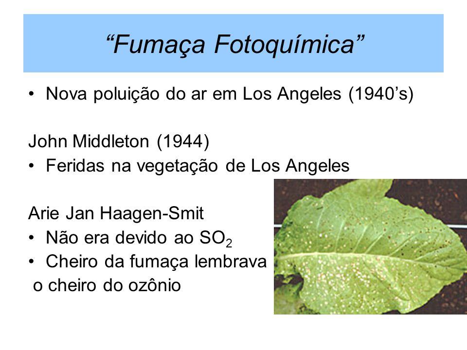 Fumaça Fotoquímica Nova poluição do ar em Los Angeles (1940s) John Middleton (1944) Feridas na vegetação de Los Angeles Arie Jan Haagen-Smit Não era d
