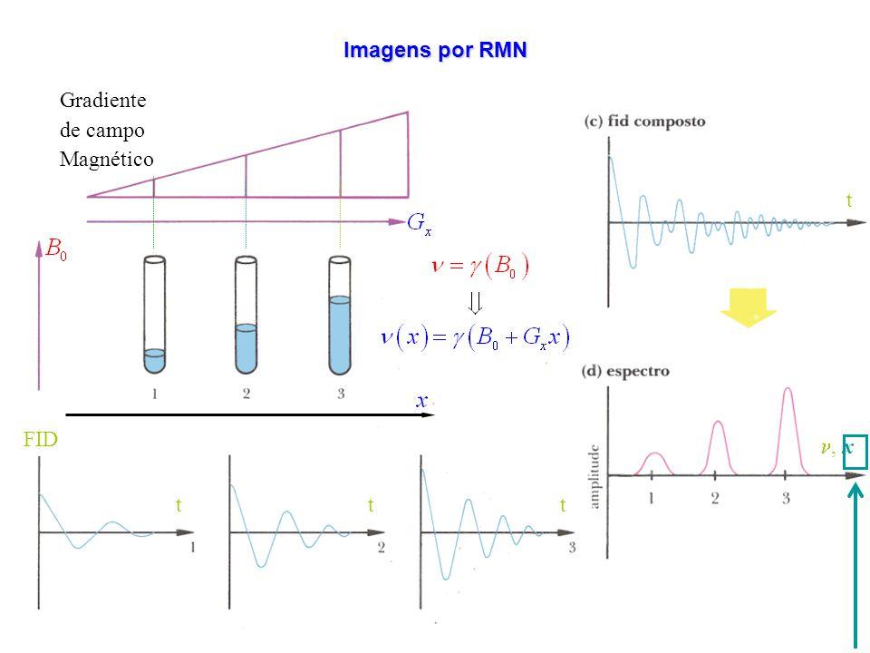 t, x t FID t tt Gradiente de campo Magnético Imagens por RMN