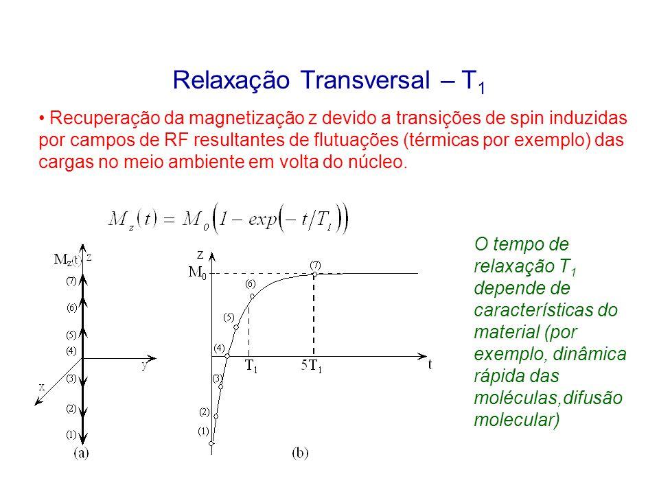 Relaxação Transversal – T 1 Recuperação da magnetização z devido a transições de spin induzidas por campos de RF resultantes de flutuações (térmicas p