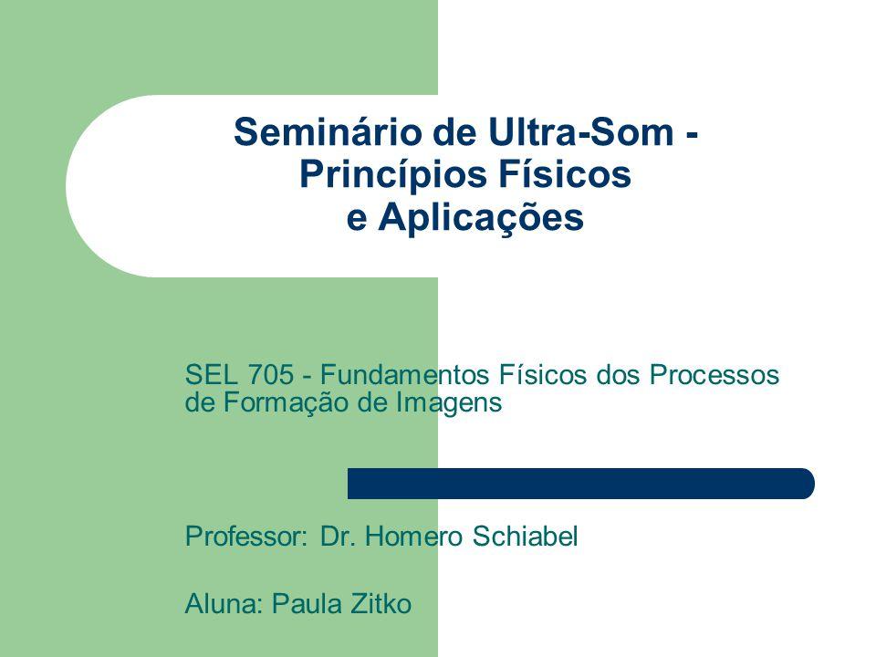 Seminário de Ultra-Som - Princípios Físicos e Aplicações SEL 705 - Fundamentos Físicos dos Processos de Formação de Imagens Professor: Dr. Homero Schi