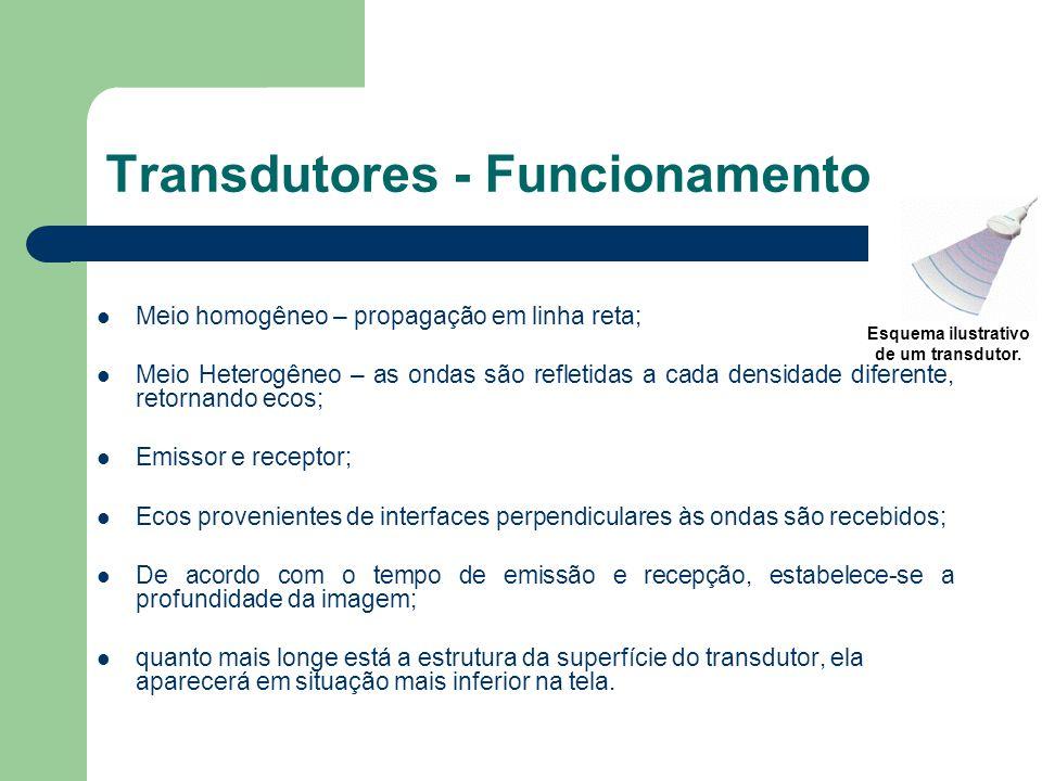 Transdutores - Funcionamento Meio homogêneo – propagação em linha reta; Meio Heterogêneo – as ondas são refletidas a cada densidade diferente, retorna