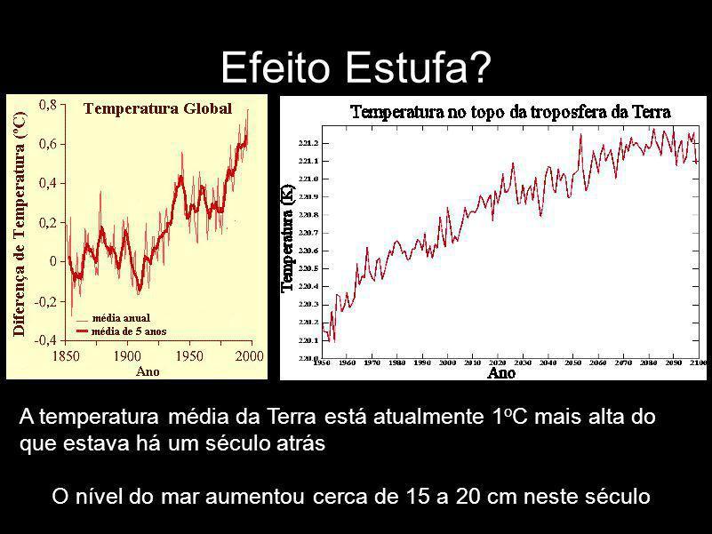 A temperatura média da Terra está atualmente 1 o C mais alta do que estava há um século atrás O nível do mar aumentou cerca de 15 a 20 cm neste século