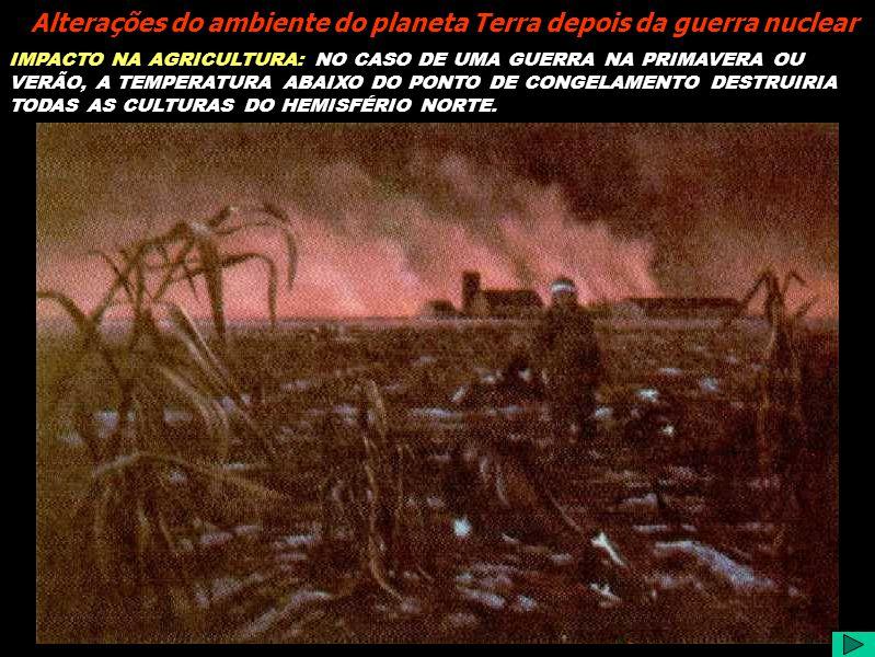 IMPACTO NA AGRICULTURA: NO CASO DE UMA GUERRA NA PRIMAVERA OU VERÃO, A TEMPERATURA ABAIXO DO PONTO DE CONGELAMENTO DESTRUIRIA TODAS AS CULTURAS DO HEMISFÉRIO NORTE.