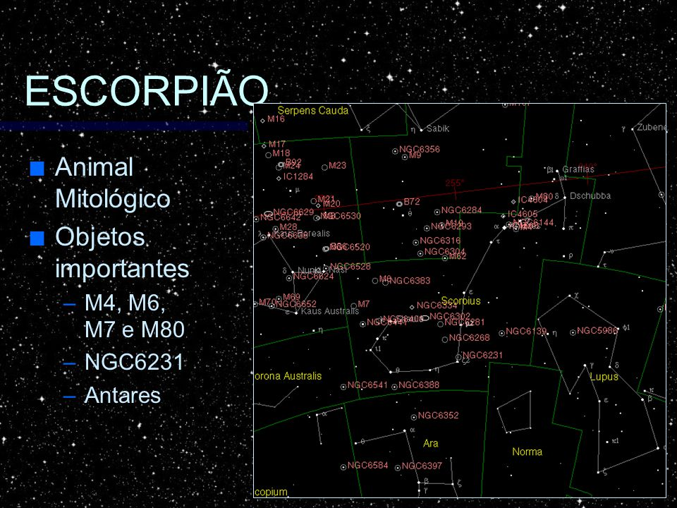 ESCORPIÃO Animal Mitológico Animal Mitológico Objetos importantes Objetos importantes –M4, M6, M7 e M80 –NGC6231 –Antares