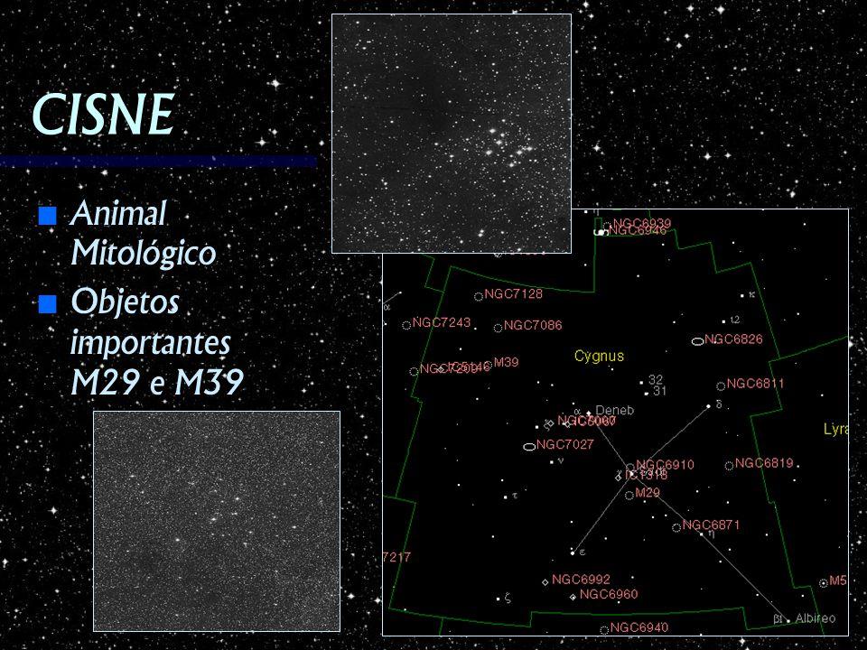 CISNE Animal Mitológico Animal Mitológico Objetos importantes M29 e M39 Objetos importantes M29 e M39