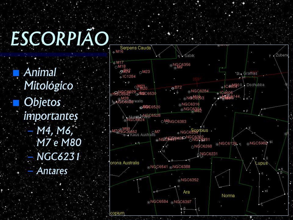 ESCORPIÃO Animal Mitológico Animal Mitológico Objetos importantes Objetos importantes – M4, M6, M7 e M80 – NGC6231 – Antares