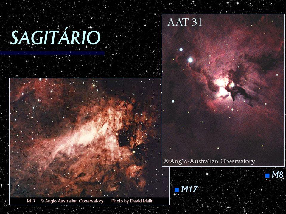 SAGITÁRIO M8 M8 M17 M17