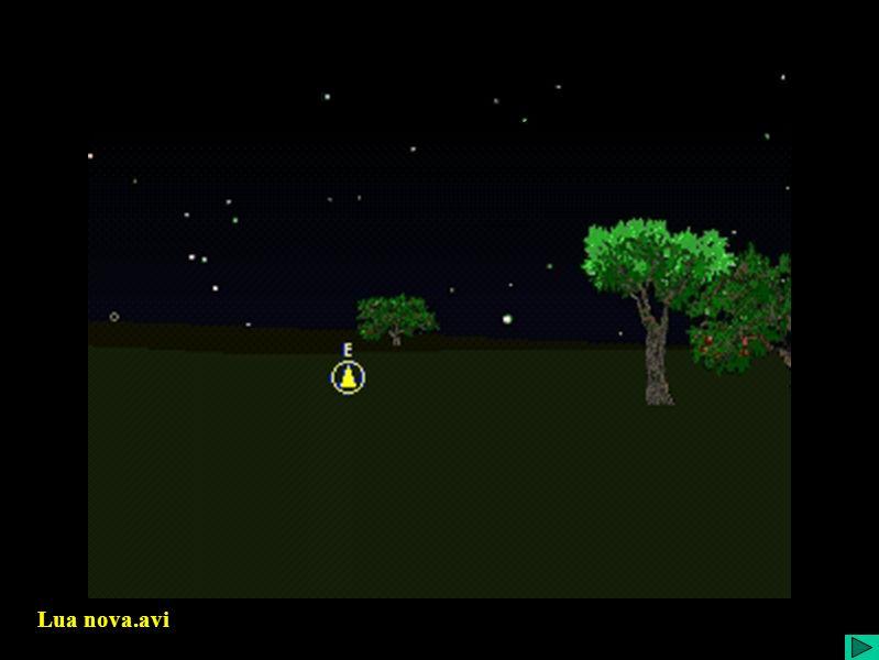 Lua nova.avi Lua Nova - animação