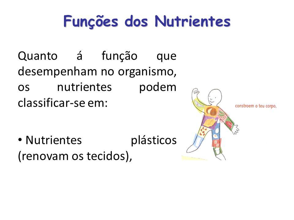 Funções dos Nutrientes Quanto á função que desempenham no organismo, os nutrientes podem classificar-se em: Nutrientes plásticos (renovam os tecidos),
