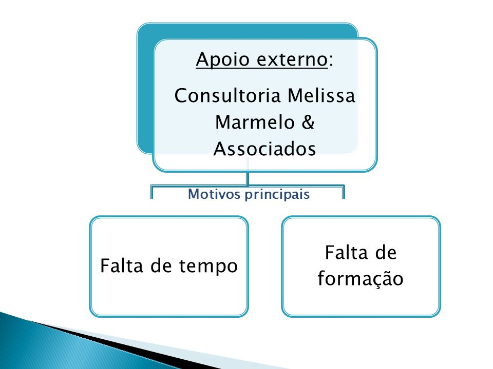 Apoio externo: Consultoria Melissa Marmelo & Associados Falta de tempo Falta de formação Motivos principais