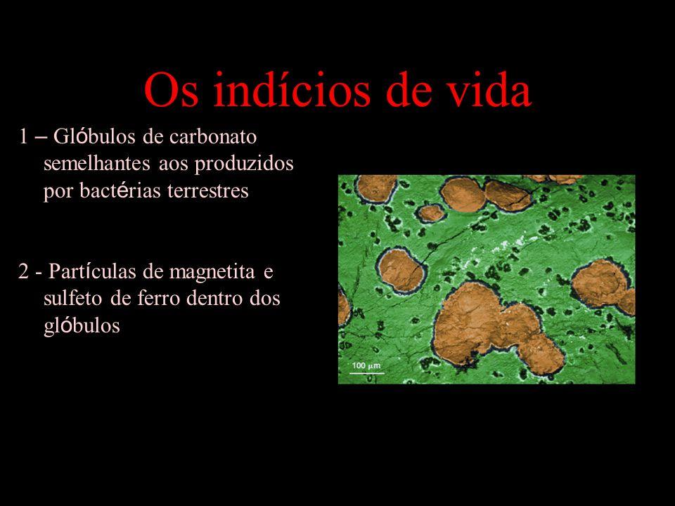 Os indícios de vida 1 – Gl ó bulos de carbonato semelhantes aos produzidos por bact é rias terrestres 2 - Part í culas de magnetita e sulfeto de ferro dentro dos gl ó bulos