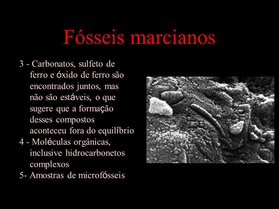 Fósseis marcianos 3 - Carbonatos, sulfeto de ferro e ó xido de ferro são encontrados juntos, mas não são est á veis, o que sugere que a forma ç ão desses compostos aconteceu fora do equil í brio 4 - Mol é culas orgânicas, inclusive hidrocarbonetos complexos 5- Amostras de microf ó sseis