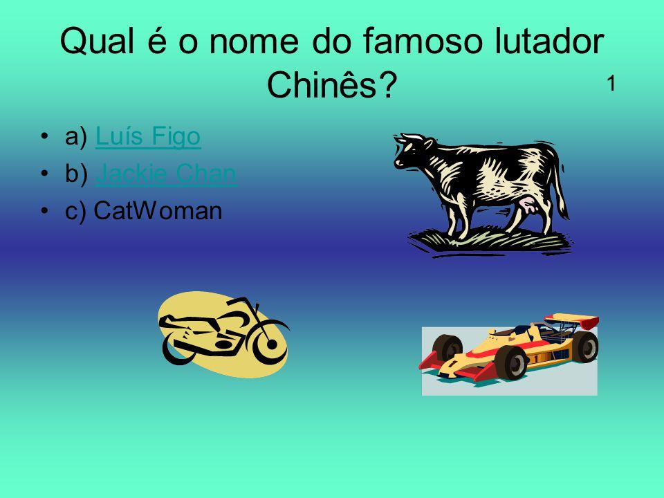 Qual é o nome do famoso lutador Chinês? a) Luís FigoLuís Figo b) Jackie ChanJackie Chan c) CatWoman 1