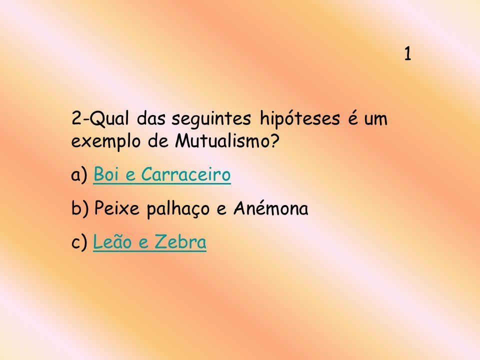 13- Qual o significado da palavra polvoem espanhol? a) GatoGato b) PóPó c) PolvoPolvo