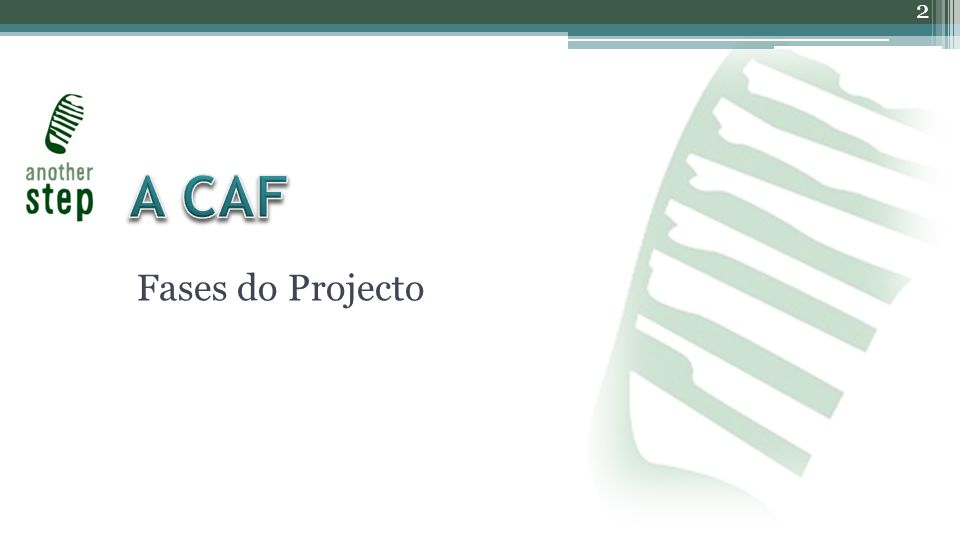 Fases do Projecto 2