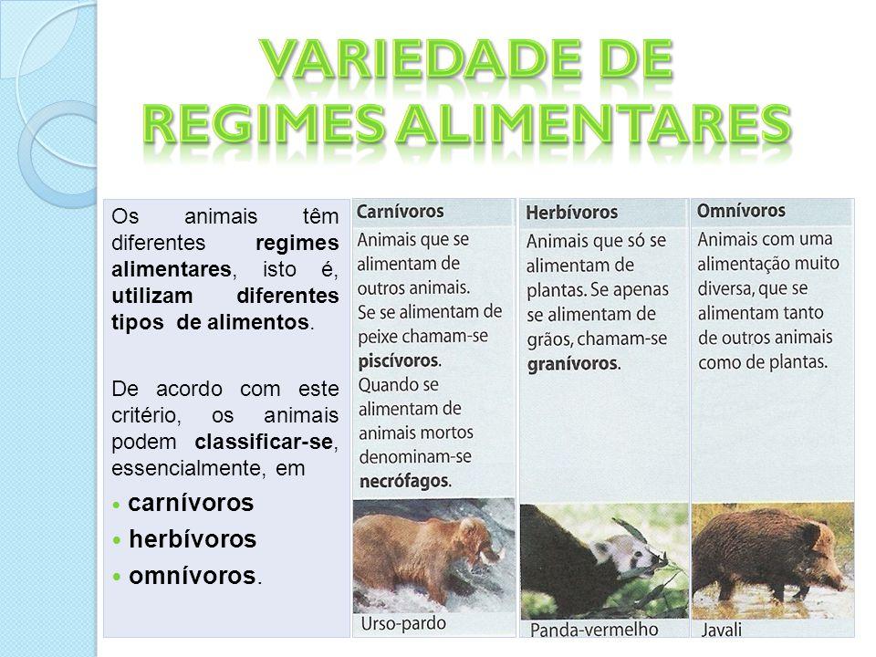 Os animais têm diferentes regimes alimentares, isto é, utilizam diferentes tipos de alimentos.
