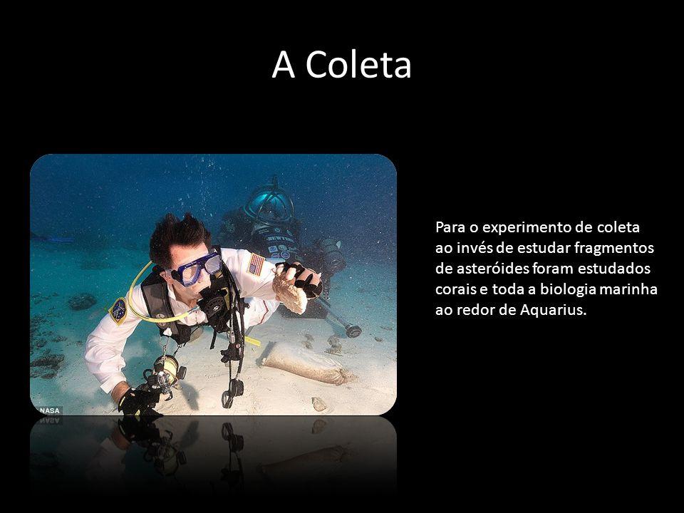 A Coleta Para o experimento de coleta ao invés de estudar fragmentos de asteróides foram estudados corais e toda a biologia marinha ao redor de Aquari