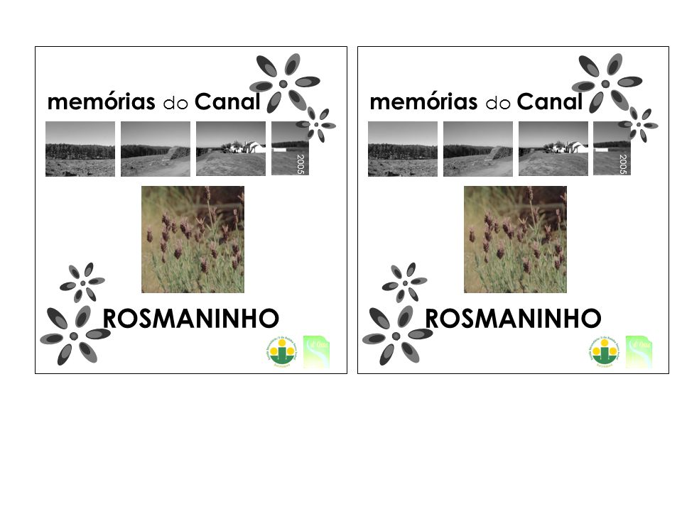 2005 memórias do Canal ROSMANINHO 2005 memórias do Canal ROSMANINHO