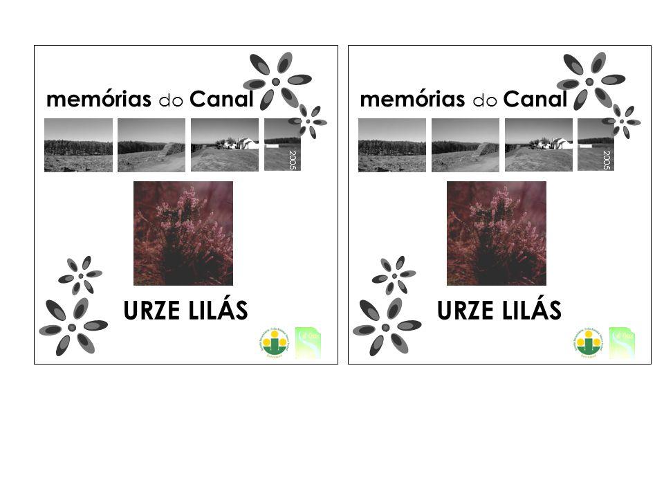 2005 memórias do Canal URZE LILÁS 2005 memórias do Canal URZE LILÁS
