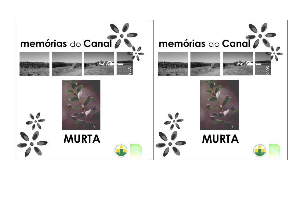 2005 memórias do Canal MURTA 2005 memórias do Canal MURTA
