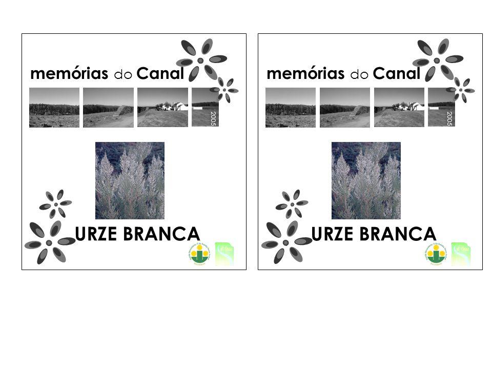 2005 memórias do Canal 2005 memórias do Canal URZE BRANCA