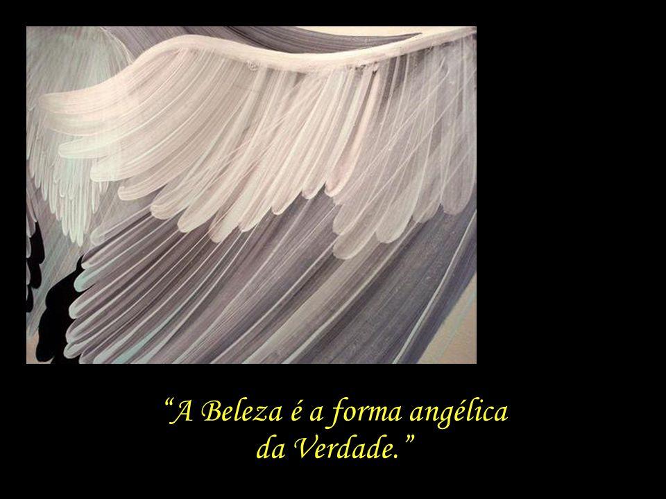 Mas os anjos sorriram-te... Porque a Beleza é a forma angélica da Verdade. Mario Quintana