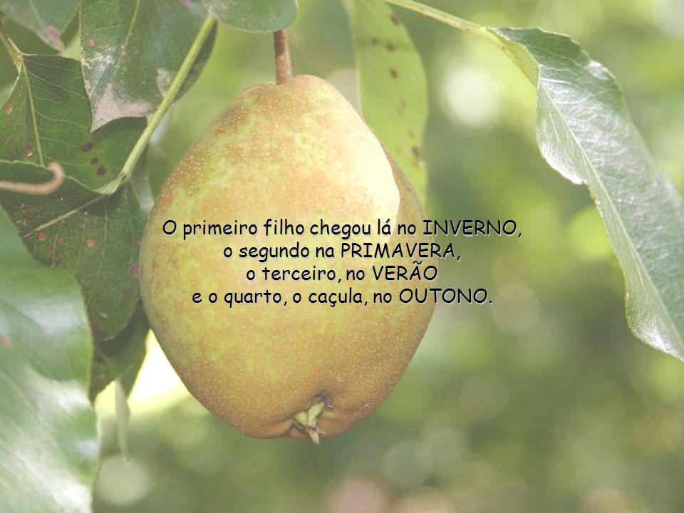 O primeiro filho chegou lá no INVERNO, o segundo na PRIMAVERA, o terceiro, no VERÃO e o quarto, o caçula, no OUTONO.