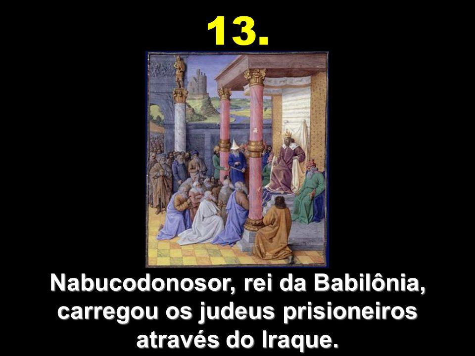 Baltazar, rei de Babilônia, viu a