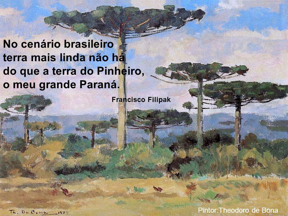 No cenário brasileiro terra mais linda não há do que a terra do Pinheiro, o meu grande Paraná.