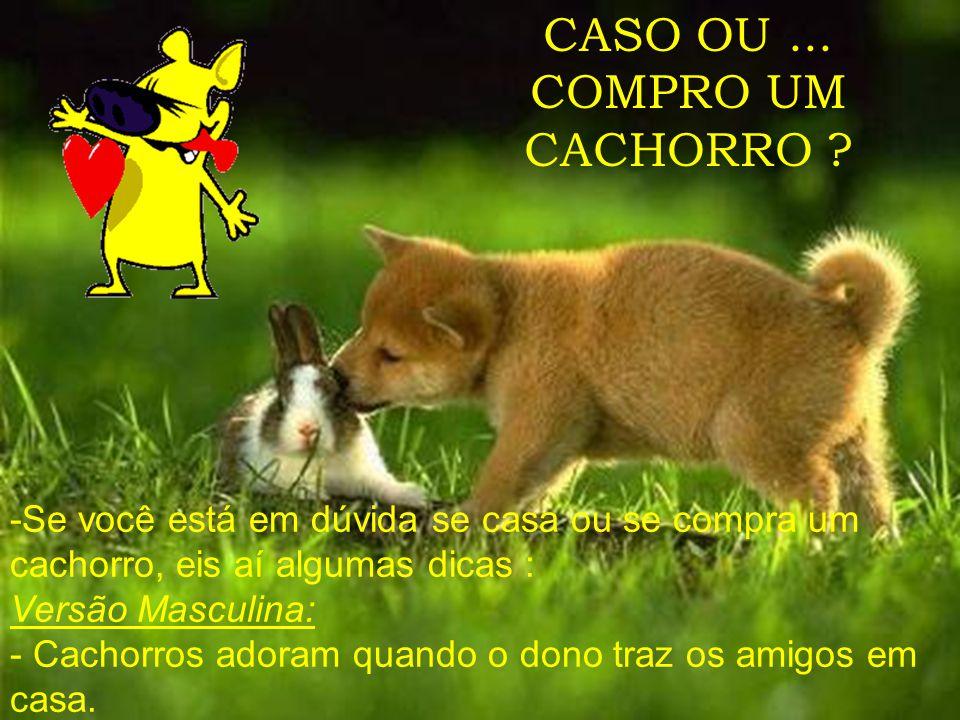 CASO OU...COMPRO UM CACHORRO .