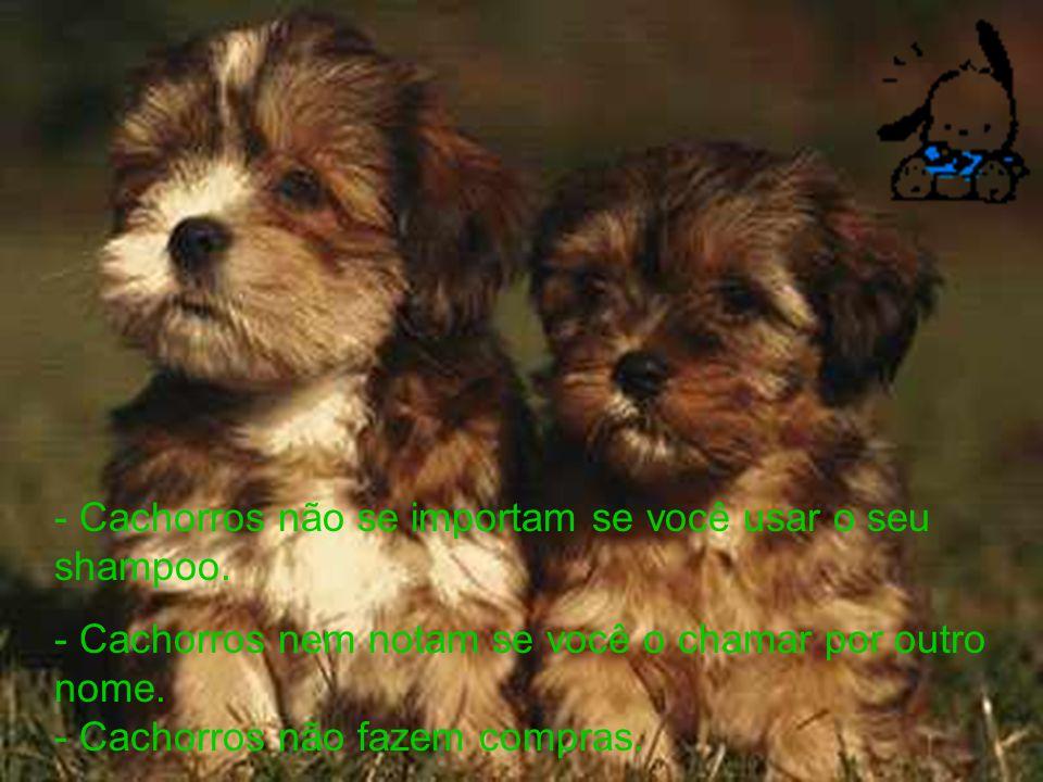 Cachorros não roncam no teu ouvido.Cachorros não sabem manusear controle remoto da TV.