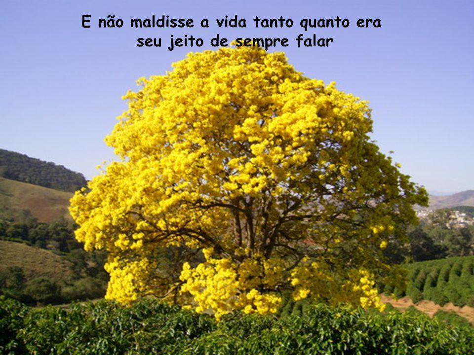 Musica: Valsinha – Chico Buarque Fotos: Internet Montagem: Fatinha E-mail: fatinhalacerda@gmail.comfatinhalacerda@gmail.com Blogs: www.farfallinefelice.blogspot.comwww.farfallinefelice.blogspot.com www.amoreeart.blogspot.com www.amovassouras.blogspot.com