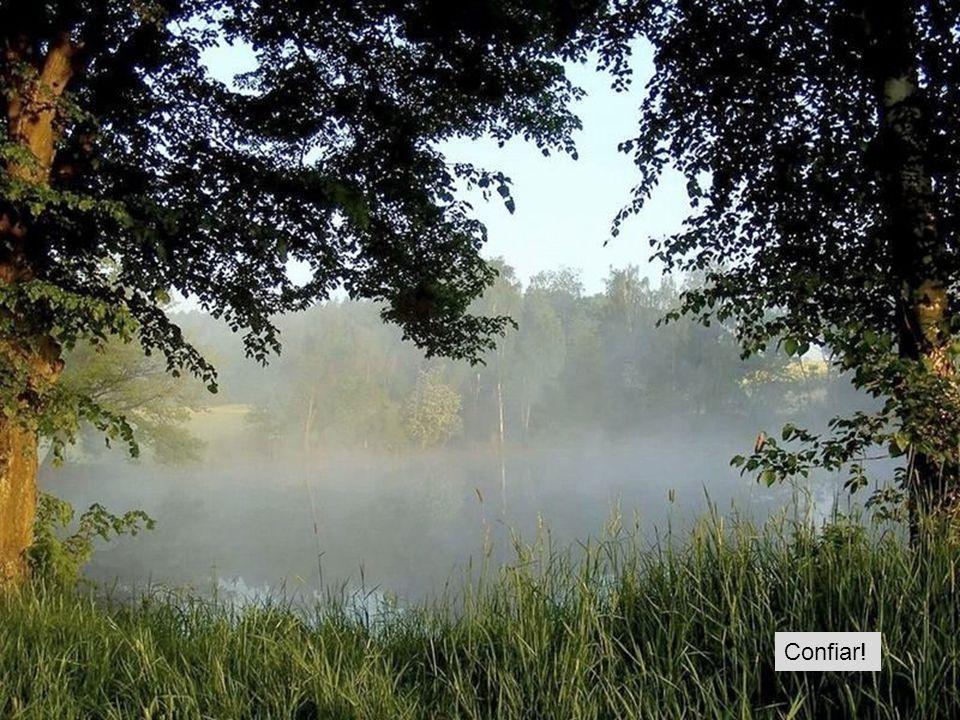 Não apressar o rio, pois ele corre sozinho...respeitar o seu ritmo!