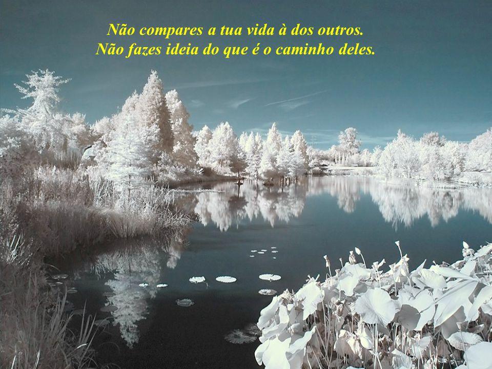 Não compares a tua vida à dos outros. Não fazes ideia do que é o caminho deles.