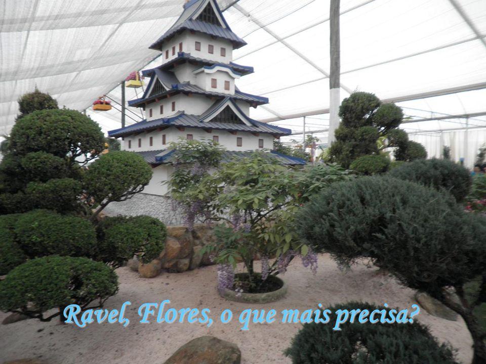 Ravel, Flores, o que mais precisa?