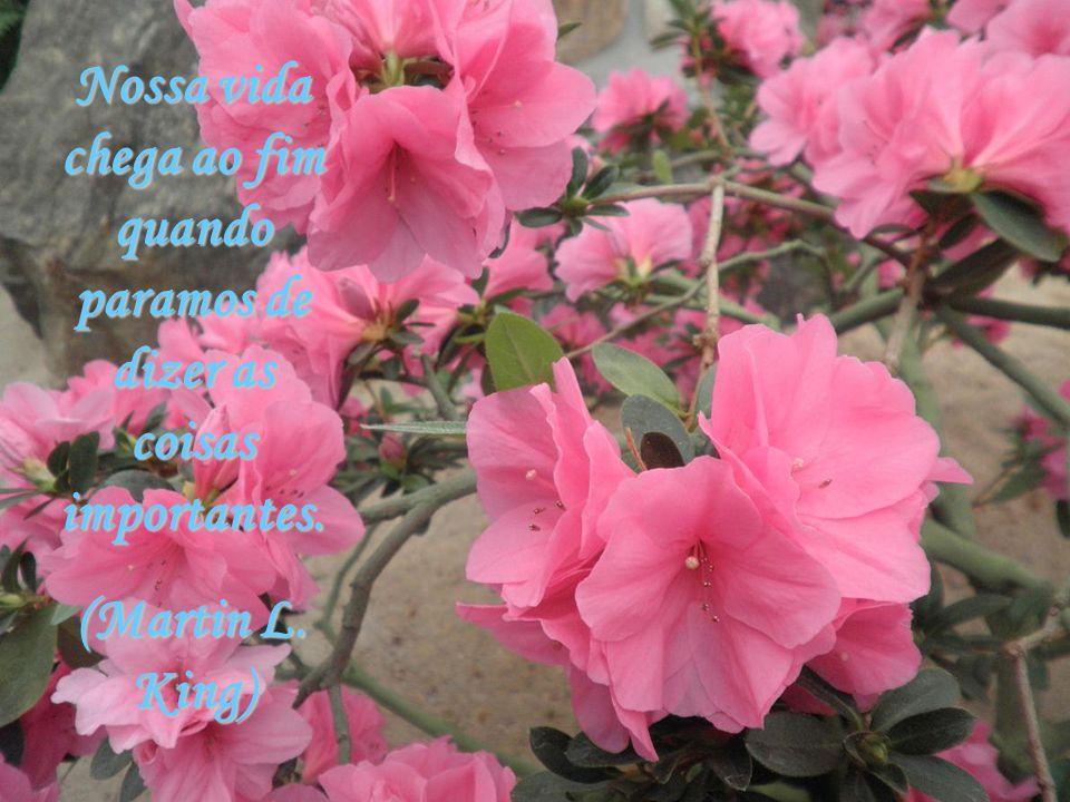 Existem duas fontes perenes de alegria pura: o bem realizado e o dever cumprido. (Eduardo Girão)