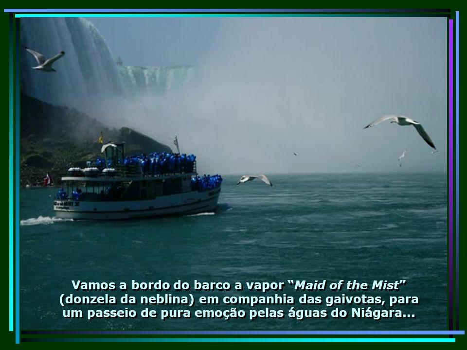 E é justamente ele o responsável pela formação de uma das mais belas cachoeiras do mundo, as cataratas de Niágara Falls verdadeiras maravilhas da natureza...