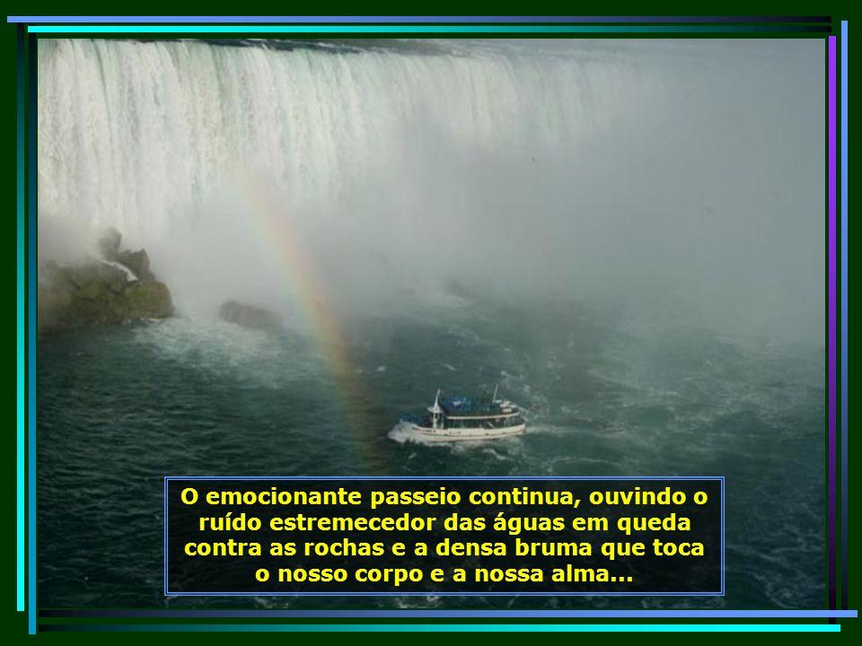 Olha que coisa maravilhosa o arco-íris formado nessa nuvem produzida pelas cataratas em meio à revoada das gaivotas...