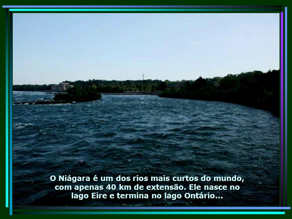 O Niágara é um dos rios mais curtos do mundo, com apenas 40 km de extensão.