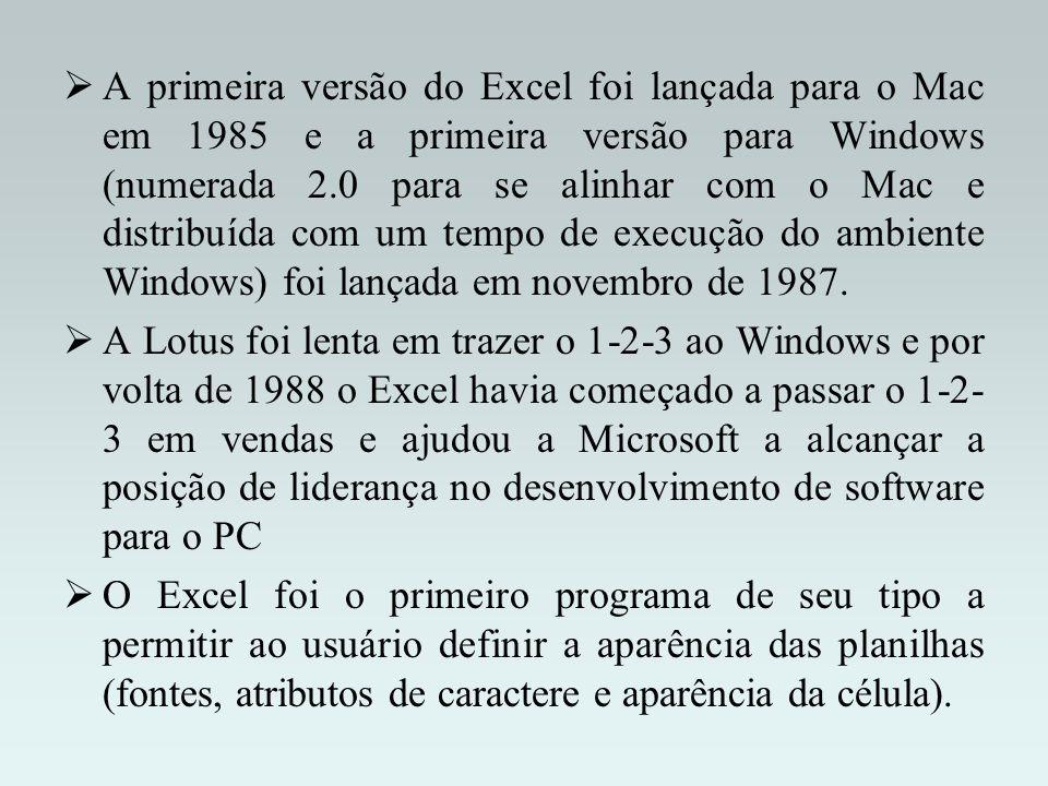 A primeira versão do Excel foi lançada para o Mac em 1985 e a primeira versão para Windows (numerada 2.0 para se alinhar com o Mac e distribuída com um tempo de execução do ambiente Windows) foi lançada em novembro de 1987.