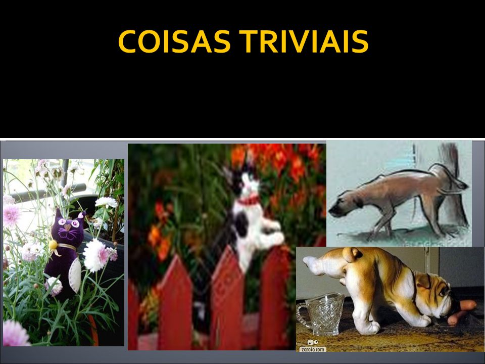 COISAS TRIVIAIS