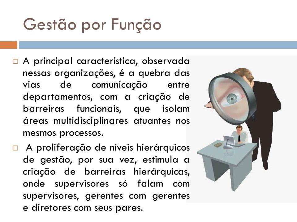 Gestão por Função A principal característica, observada nessas organizações, é a quebra das vias de comunicação entre departamentos, com a criação de