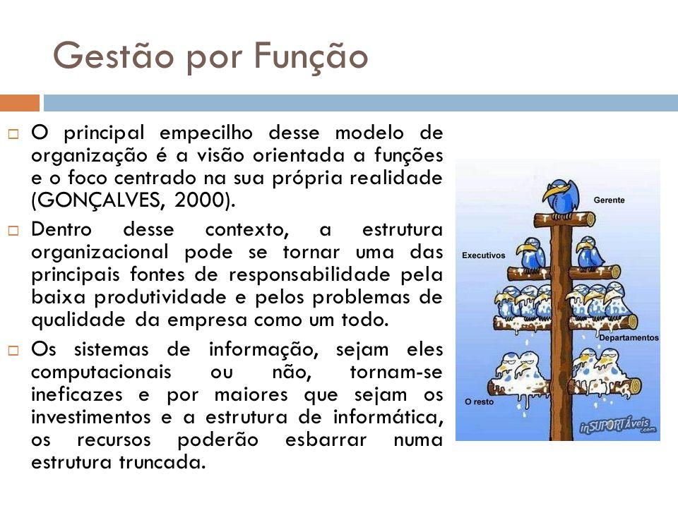 O principal empecilho desse modelo de organização é a visão orientada a funções e o foco centrado na sua própria realidade (GONÇALVES, 2000). Dentro d