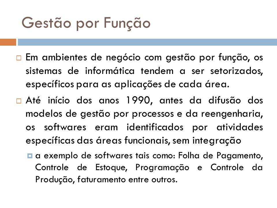 Gestão por Função Em ambientes de negócio com gestão por função, os sistemas de informática tendem a ser setorizados, específicos para as aplicações d