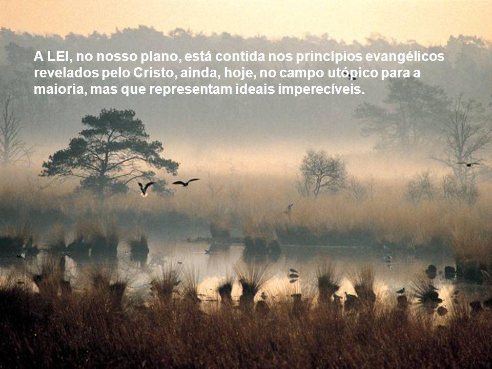 Nesse campo existe também uma LEI, que expressa o pensamento e a vontade do Criador, no campo da evolução espiritual.