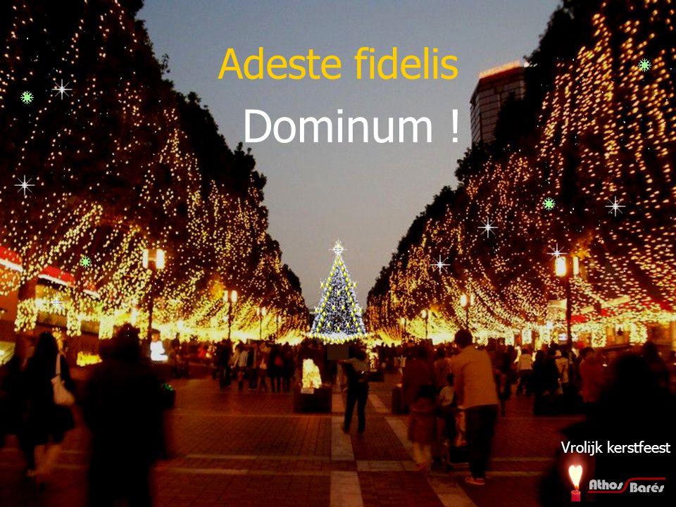 Adeste fidelis Venite adoremus venite adoremus Весела Коледа